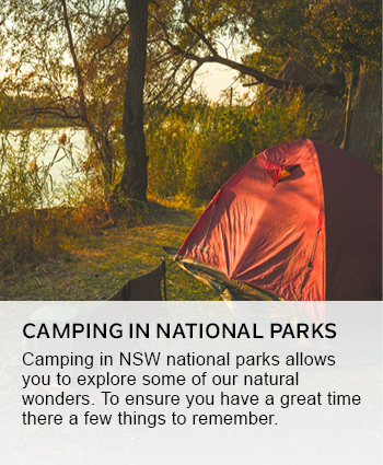 camping in nsw national park