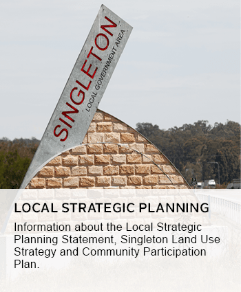 local strategic planning