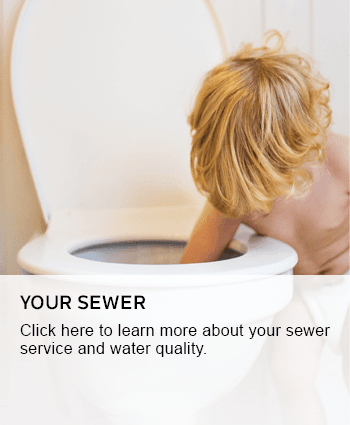 Your sewer