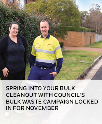 spring into your bulk cleanout with Councils bulk waste campaign locked in for november