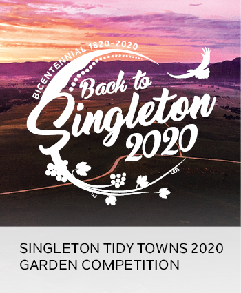 singleton tidy towns 2020 garden competition