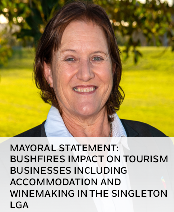 Bushfires impact on tourism businesses including accommodation and winemaking in the Singleton LGA