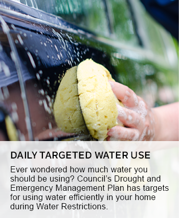 daily targeted water use