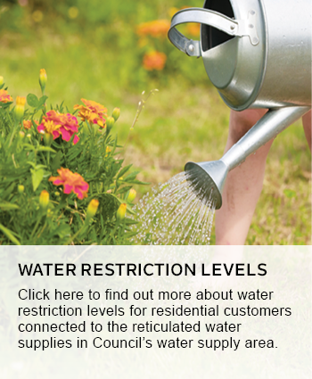 water restriction levels