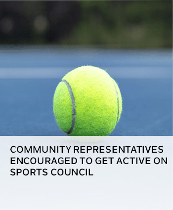 Community representatives encouraged to get active on Sports Council