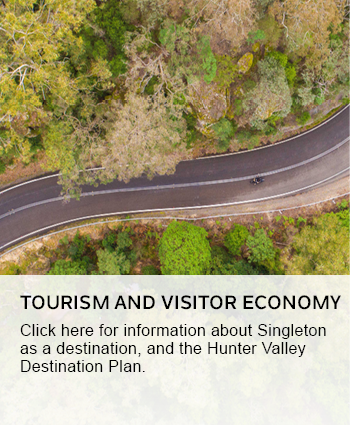 tourism and visitor economy