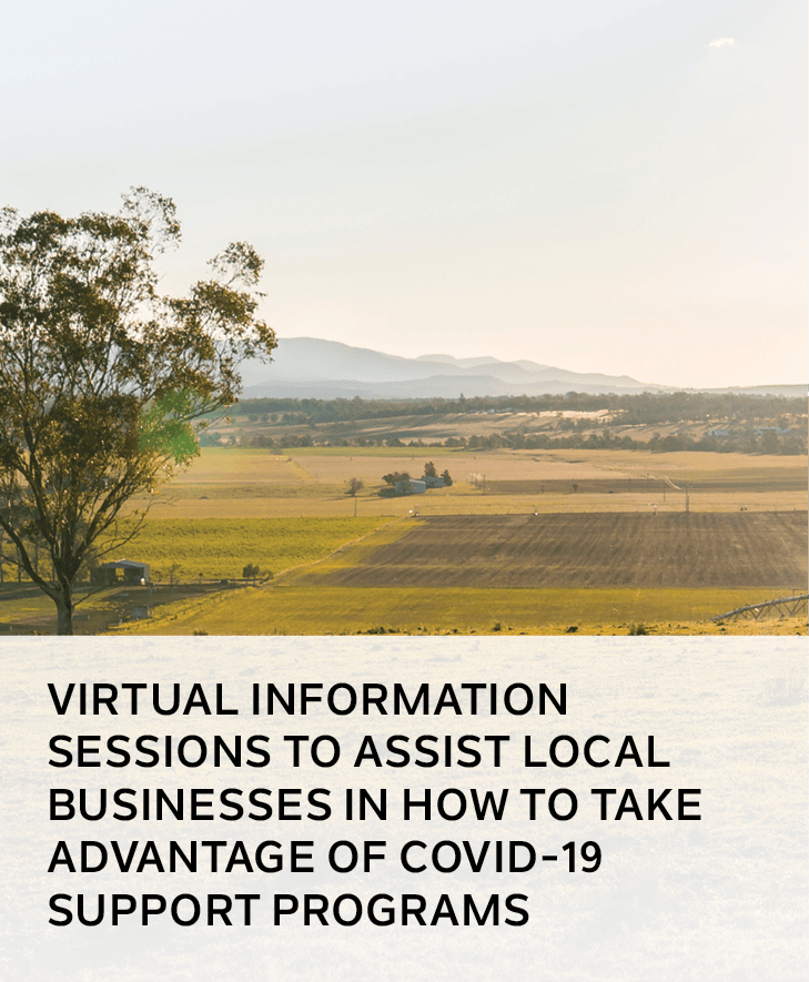 Virtual information sessions to assist local businesses in how to take advantage of Singleton Counci