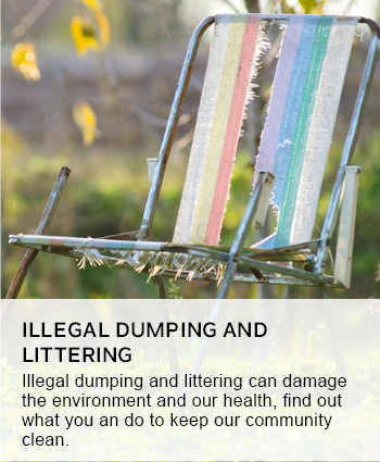 ILLEGAL DUMPING AND LITTERING