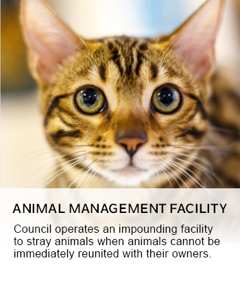 ANIMAL MANAGEMENT FACILITY