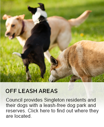 OFF LEASH AREAS
