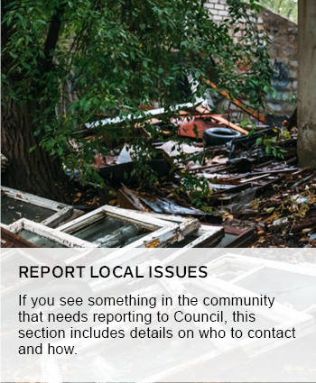 Report local issues