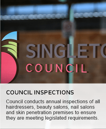 Council inspections