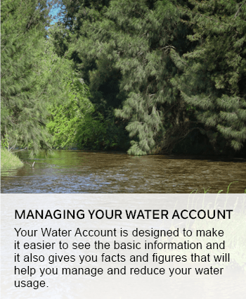Managing your water account
