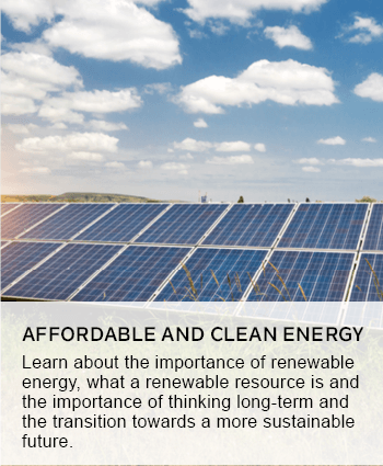 afforable and renewable energy