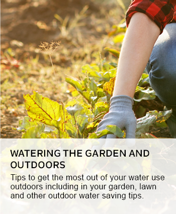 watering the garden and outdoors